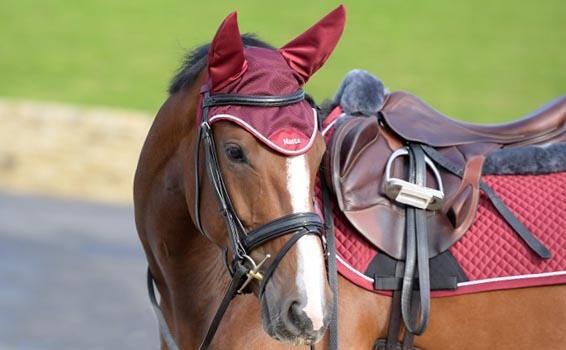 Horse Xmas Gifting | Harry Hall