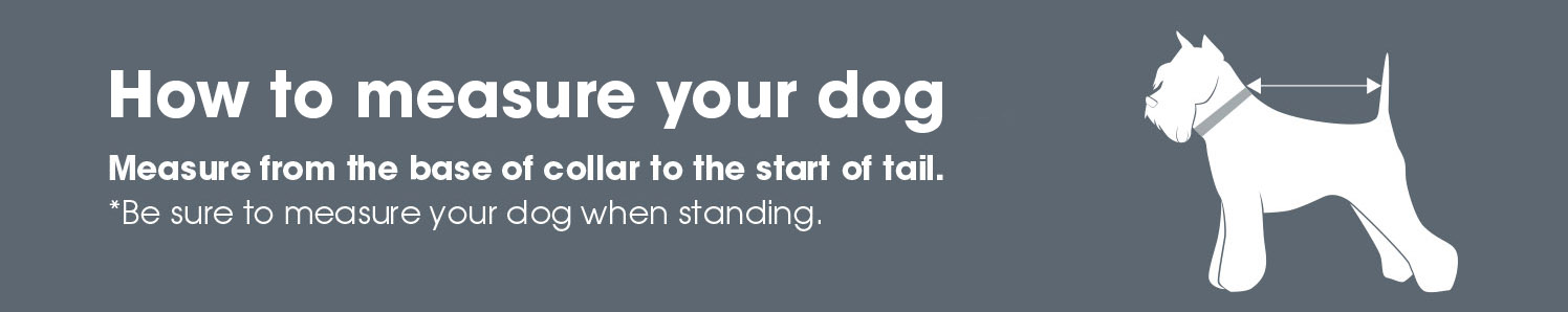How to Measure Dogs | Harry Hall