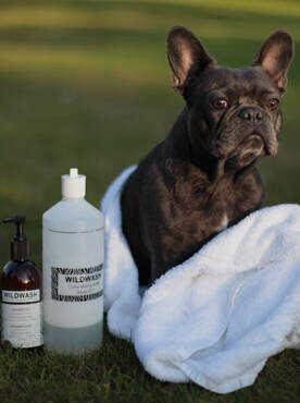 Dog Grooming & Treats