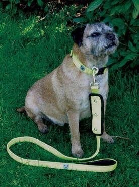 Woofmasta Dog Products